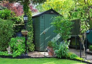 Green shed in backyard garden